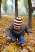 Happiness child playing in forest — Stock Photo