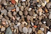 Wet pebbles — Stock Photo