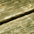 Aged wooden boards texture — Stock Photo #1345587
