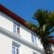 Stock Photo: Palm tree and building on tourist resort