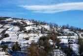 Karpatian village in mountains — Stockfoto