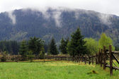 Valla de madera en el pasto — Foto de Stock