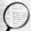 Magnifying glass and document close up — Stock Photo #1362752