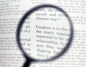 Magnifying glass and document close up — Photo