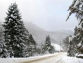Camino de invierno cubierto de nieve en las montañas — Foto de Stock