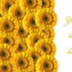 Beautiful yellow gerberas background — Stock Photo #1564003