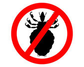 Prohibition sign for lice on white backg — Stock Photo
