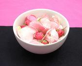 Růže poupata a květy — Stock fotografie