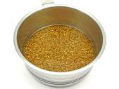 Unripe spelt grain watered — Stock Photo