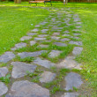 Stone path in the park — Stock Photo