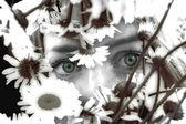 Green eyes — Stock Photo