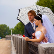 Newlyweds with umbrella — Stock Photo
