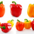 Collection of colored paprika isolated - Stock Photo
