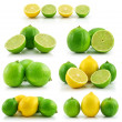 Collection of Ripe Lime and Lemon Isolat - Stock Photo