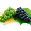 Bunch of Ripe Green and Blue Grapes with — Stock Photo #1297210