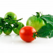 Ripe Wet Red and Green Tomatoes with Lea - Stock Photo