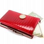 Красный кошелек, изолированные на белом фоне — Стоковое фото