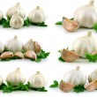 Collection of Garlic Vegetable with Gree - Stock Photo