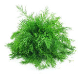Bunch of Ripe Dill Isolated on White — Stock Photo