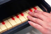 Woman's hands Playing Piano Isolated on — Stok fotoğraf