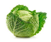Ripe Savoy Cabbage Isolated on White — Stock Photo