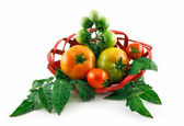 Basket with Ripe Tomatoes (Still Life) Isolated — Stock Photo