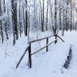 The snow-covered bridge - Stock Photo