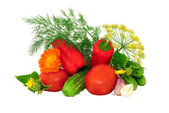 Juicy vegetables and dill — Stock Photo