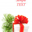 Christmas gift — Stock Photo #1771932