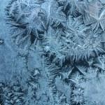 Frostwork — Stock Photo #1772849