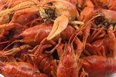 红色、 美味、 水煮小龙虾 — 图库照片
