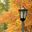 Lantern against autumn yellow trees - Stock Photo