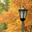 Lantern against autumn yellow trees - Stockfoto