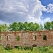 Stock Photo: Ruins of old building