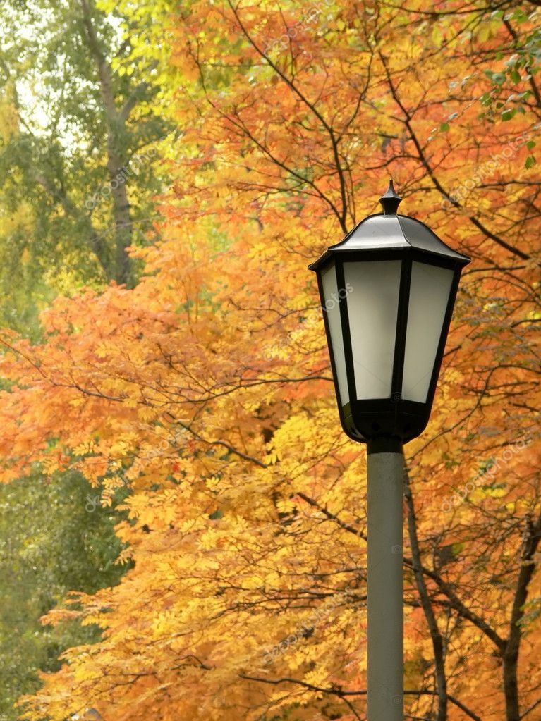 Lantern against autumn yellow trees — Stock Photo #1291487