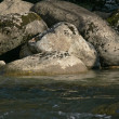 Big stones in river — Stock Photo