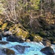 Flow and stones covered a moss in river — Stock Photo