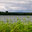 Stock Photo: Lake panoramand overcast cloudscape