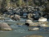 The river Yurtok, flow. Autumn in taiga. — Stock Photo