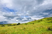 Green hill and overcast cloudscape — Stock Photo