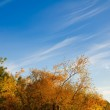Sky with light clouds at autumn — Stock Photo