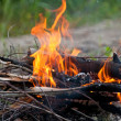 The fiery fire burns - Stock Photo