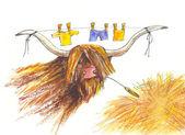 Bull. Drawing — Stock Photo