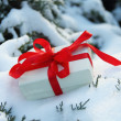 Royalty-Free Stock Photo: Winter gift