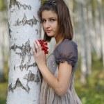 The girl near the birch — Stock Photo #2552644