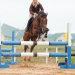 Show jumping - young girl and horse — Stock Photo #1508195