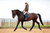 Training: young girl riding on bay horse — Stock Photo