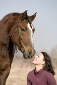 Young girl and the horse in field — Stock Photo