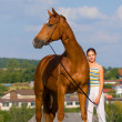 Royalty-Free Stock Photo: Chestnut bavarian horse and girl
