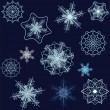 Snowflake collection - Stok Vektör